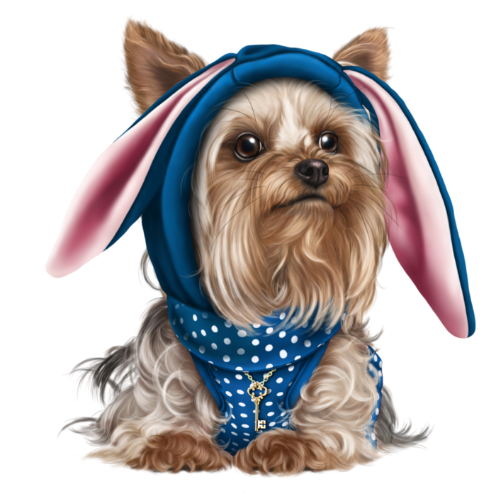 banner free download yorkie vector small dog #119006554