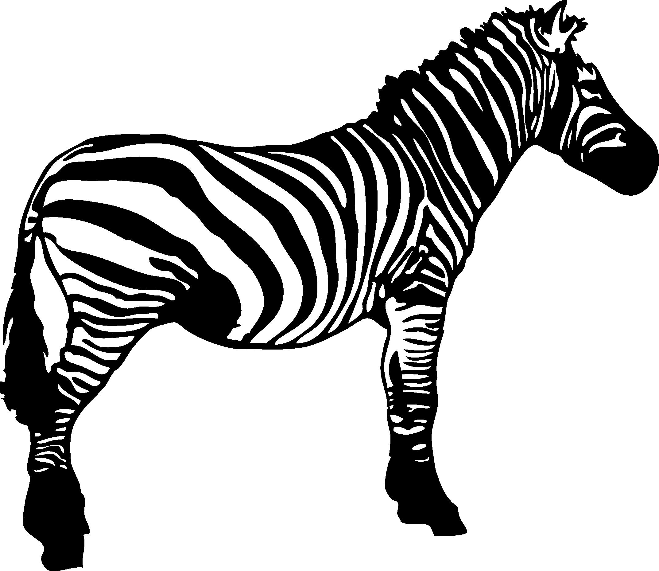 graphic black and white download Stripe clip art transprent. Zebra black and white clipart