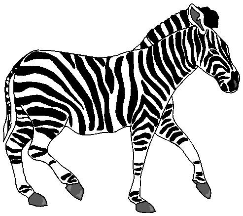 graphic library download Free cliparts download clip. Zebra clipart.