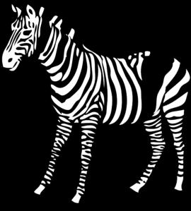 picture transparent library Zebra clipart clip art. At clker com vector