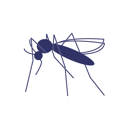 clip transparent download Echevarne laboratory offers the. Zika vector.
