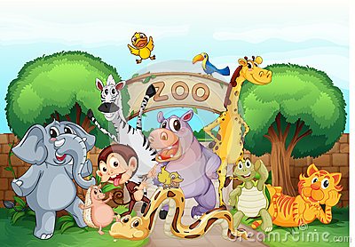 png transparent Free cliparts download clip. Zoo clipart