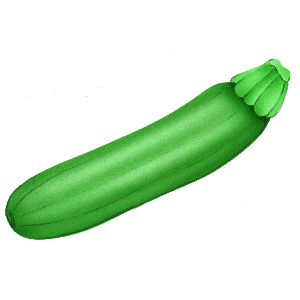 picture freeuse download Free cliparts download clip. Zucchini clipart
